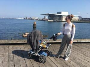 Prechádzka pri mori, Kodaň